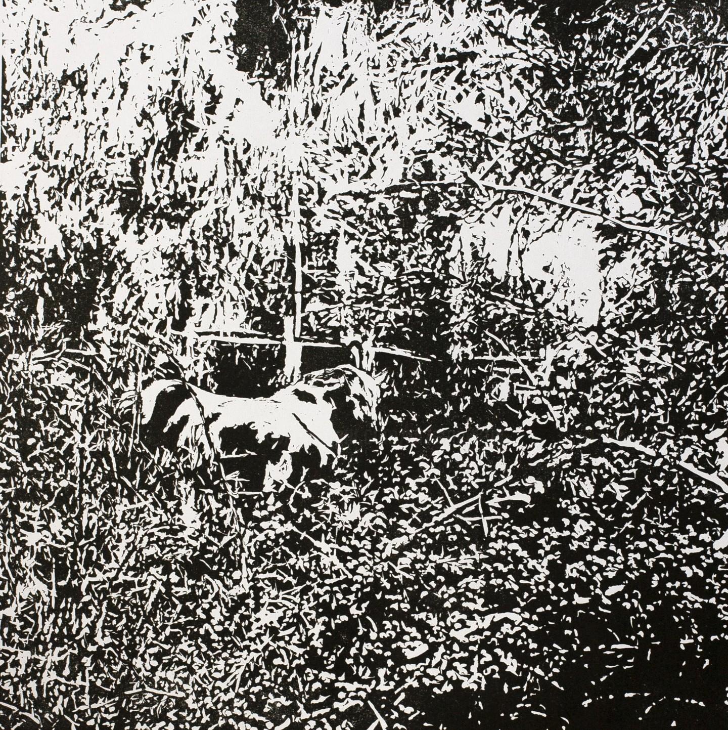 Przemek Kret - Forest Edge